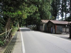 walk1296