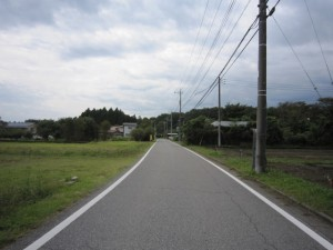 walk1339