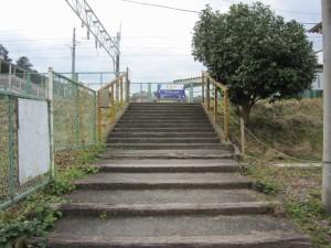 walk1355